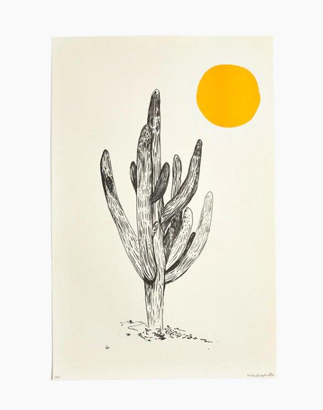 Emily Miller cactus print