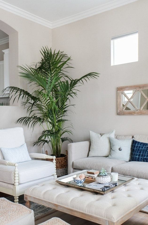 cream coastal family room with plants and shells