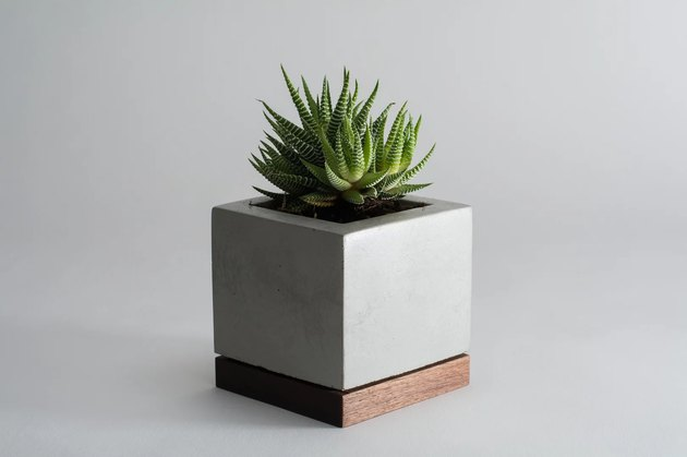 KOMOLAB Desk Planter