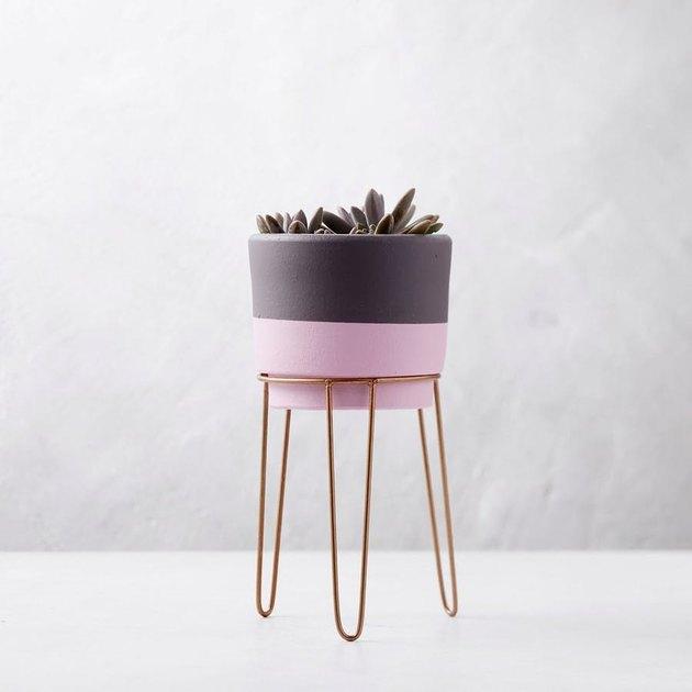 tastemade-terracotta-planter