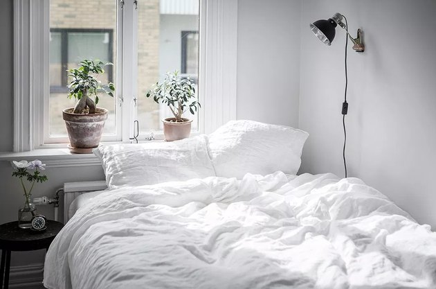 white bedroom ideas with houseplants