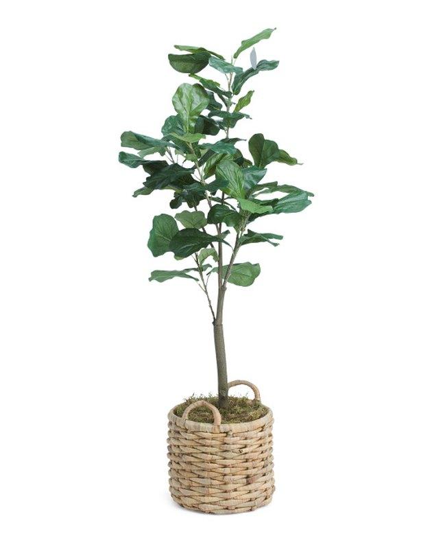Silkcraft of Oregon Fiddle Leaf Fig Tree in Basket, $79.99