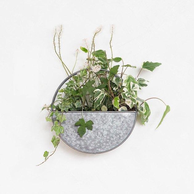 terrain wall planter