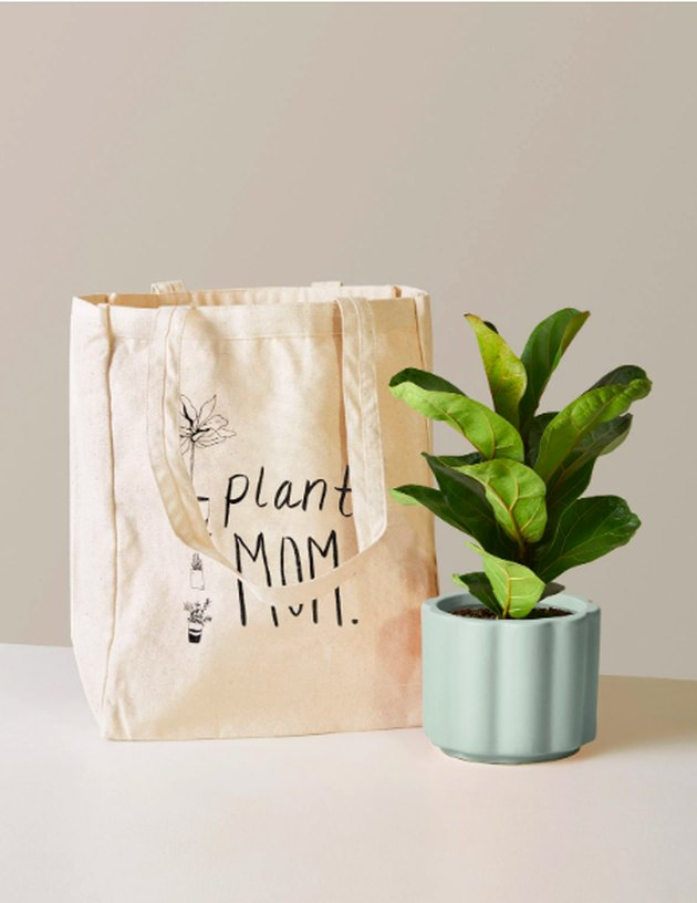 "tote bag with ""plant mom"" text and plant in mint planter"