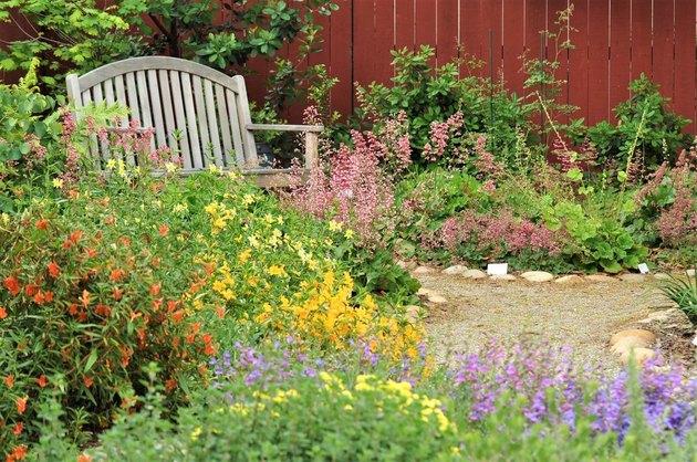 native garden and bench