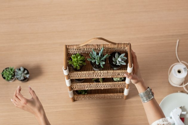 Earth Day planter DIY with succulents