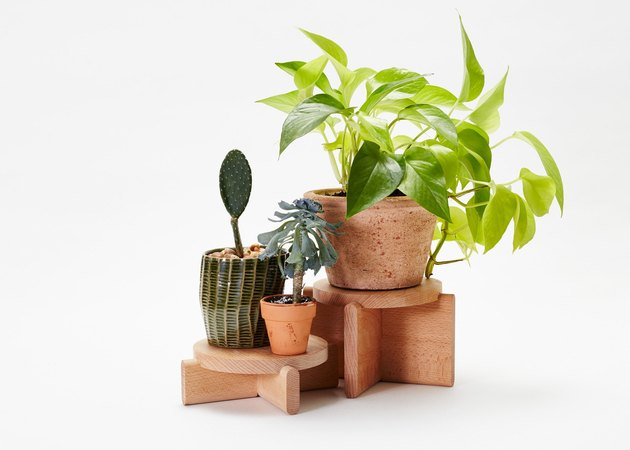 wooden plant pedestals from Areaware