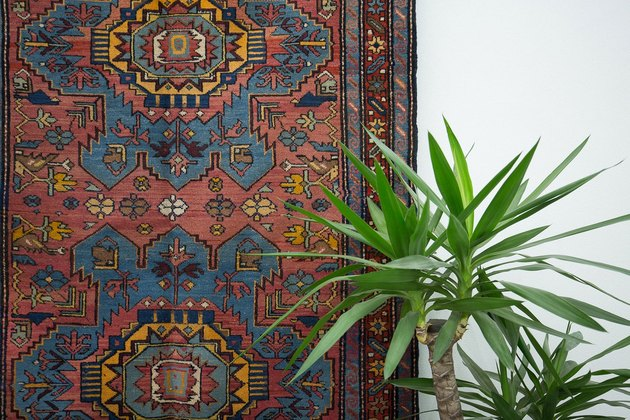 Antique boho rug and plant