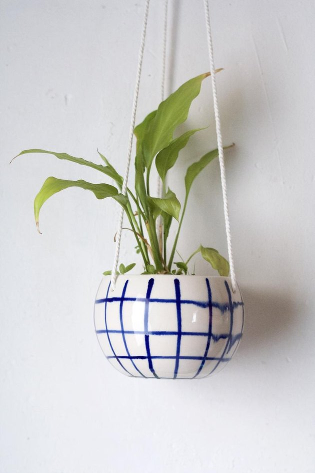 hanging planter with plant