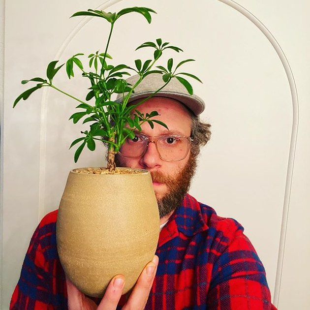 man holding vase with plant