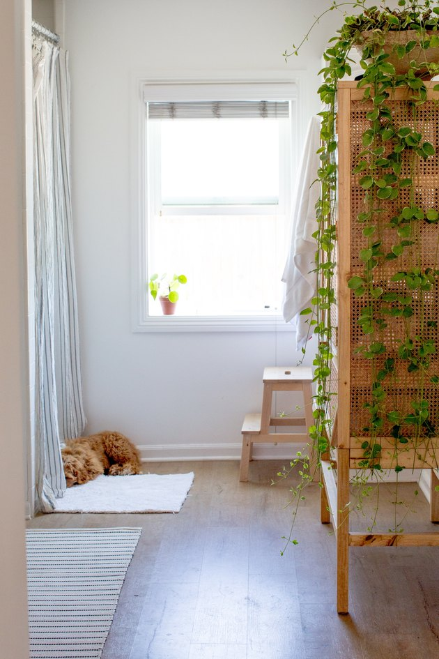 bathroom with wood linen cabinet, green plant, wood step stool, open window with plant in windowsill, orange cat, vinyl wood floor