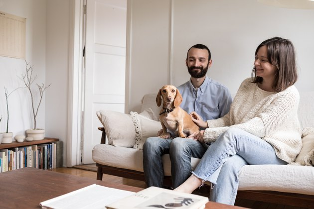 Couple in living room with their dog
