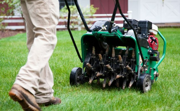 Power lawn aerator.