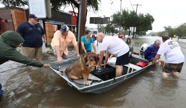 Hurricane Harvey victims.