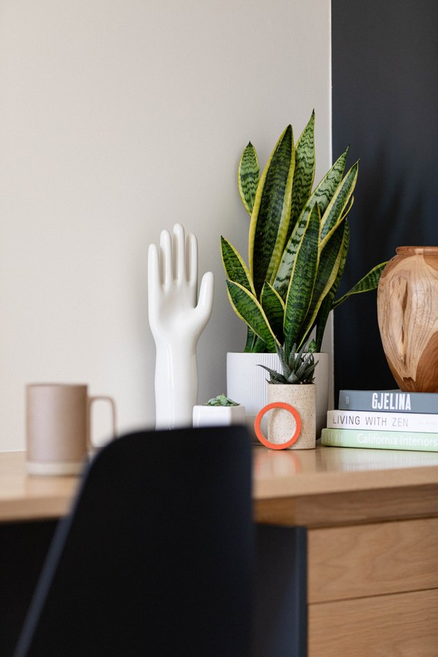 Snake plant on home office desk
