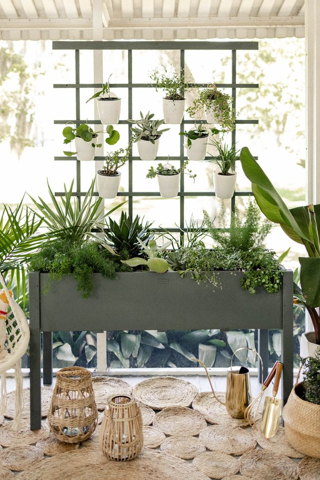 DIY vertical garden on boho patio with hammock
