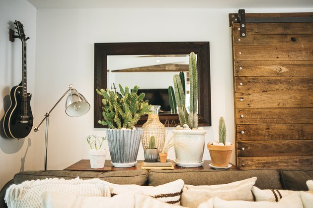 Bohemian living room idea with cacti and rustic sliding barn door