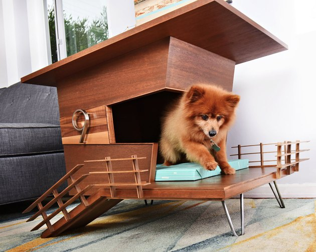Modern Dog Tower House