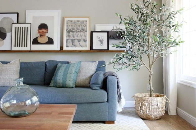 diy rustic decor art ledge in living room with blue sofa olive tree in the corner