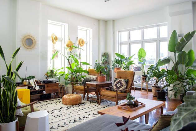 vintage living room idea with vintage furniture and lots of plants