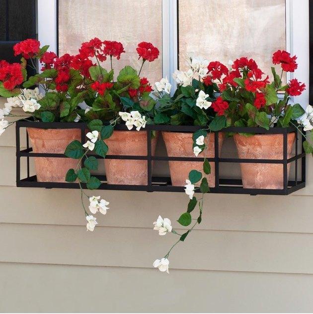 jardinières en terre cuite avec des bégonias dans une boîte à fleurs