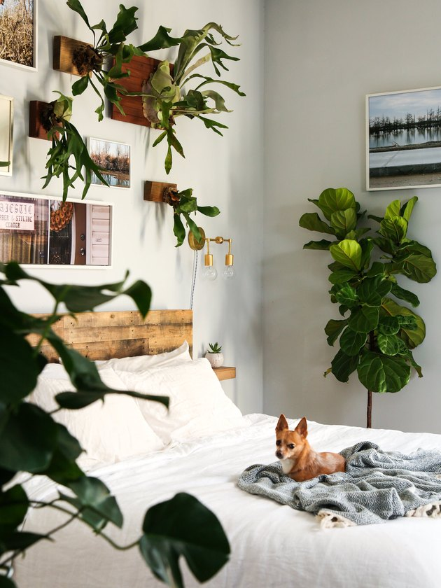 artistic plant themed bedroom idea with rustic headboard