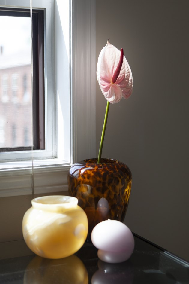 Flower in vase with found objects by window