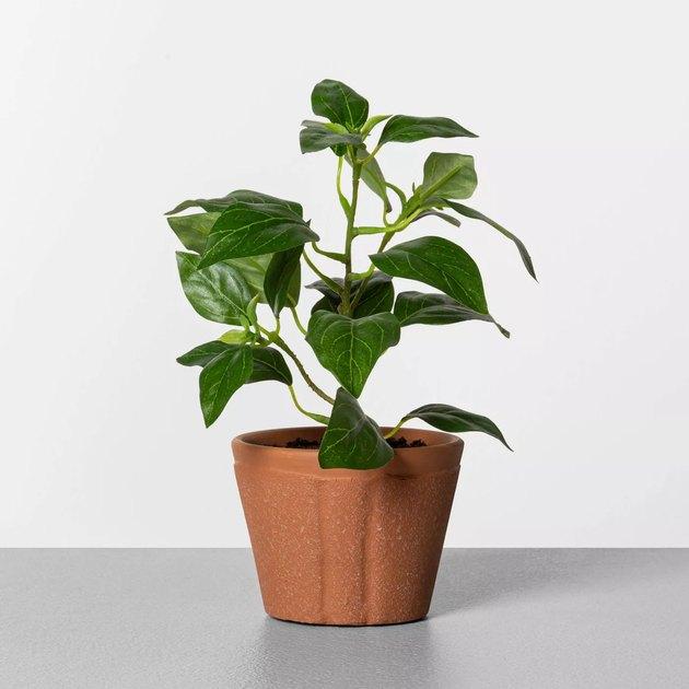 faux pepper plant