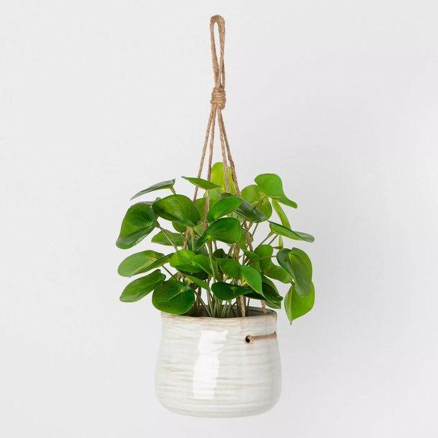 faux hanging plant