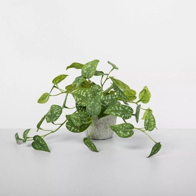 faux silver vine potted plant