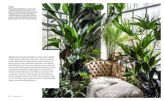 """Wild at Home"" by Hilton Carter book interior"