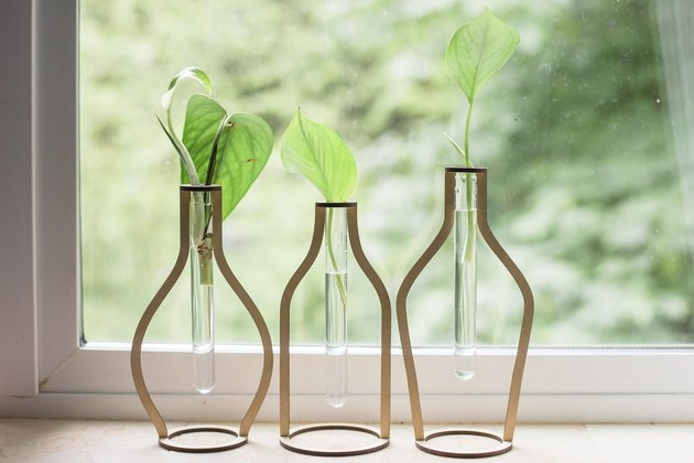 clear beakers inserted in wooden cut-outs shaped like bottles of various shapes