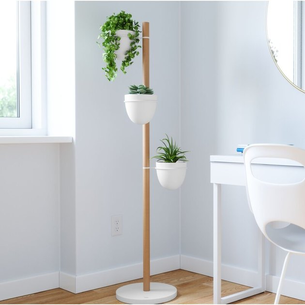 Wooden plant stand with three white plants at various vertical heights