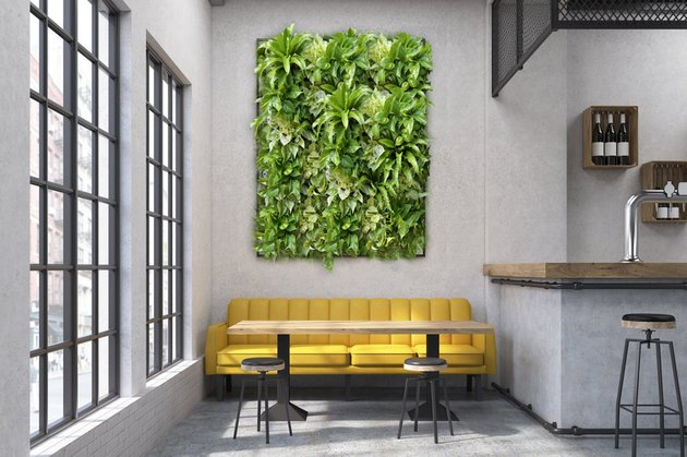 Vertical wall garden over mustard yellow couch