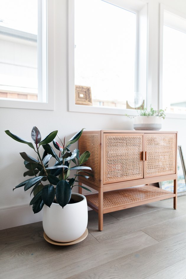 Vintage cabinet with plants