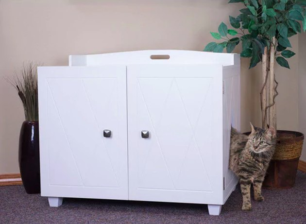 Kitty Litter Box Enclosure