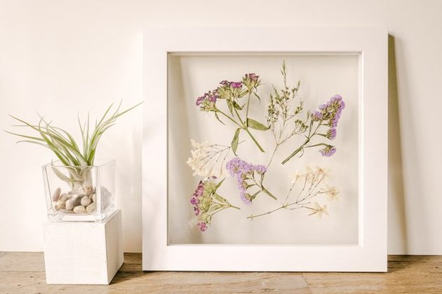 DIY Pressed Flowers in a Frame