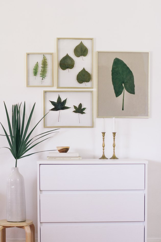 Preserved leaves in floating frames