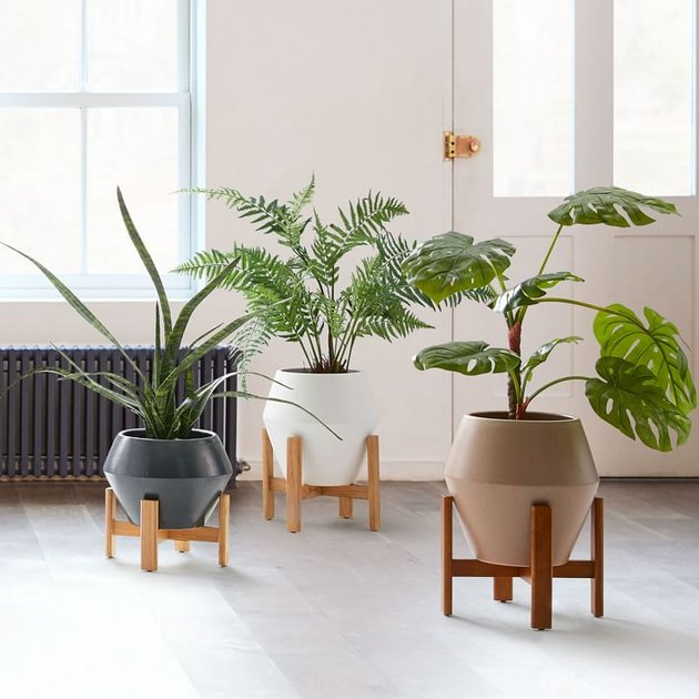 Best Planter Destinations West Elm