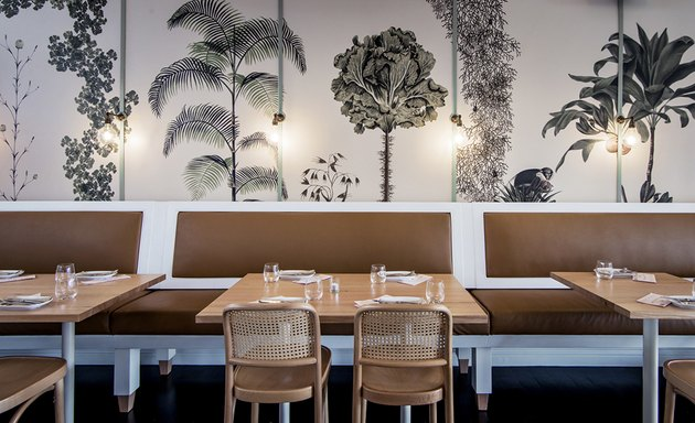 tree-lined wallpaper on wall at restaurant