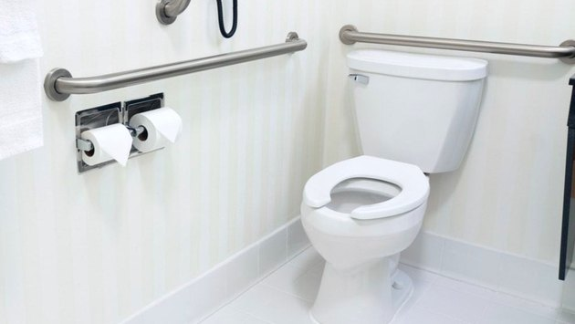 Toilet with grab bars.