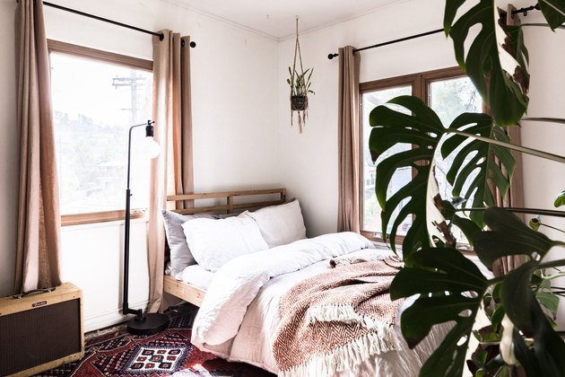 bedroom with large plant on the side