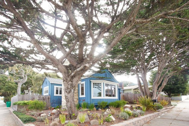 Airbnb blue home
