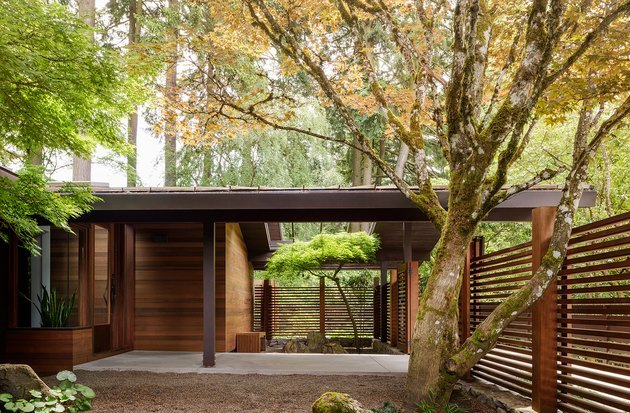wood cabin with midcentury modern exteriors