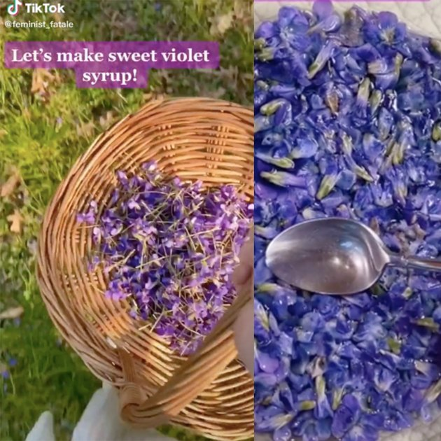 two screenshots of tiktok video showing a basket with violets and a bowl with violets and a spoon