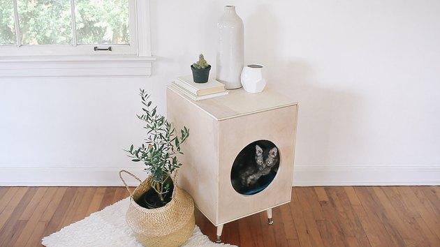 Cat inside modern plywood litter box hider