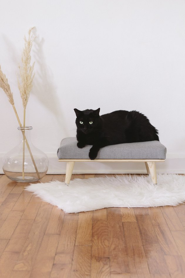 DIY chic stylish cat bed