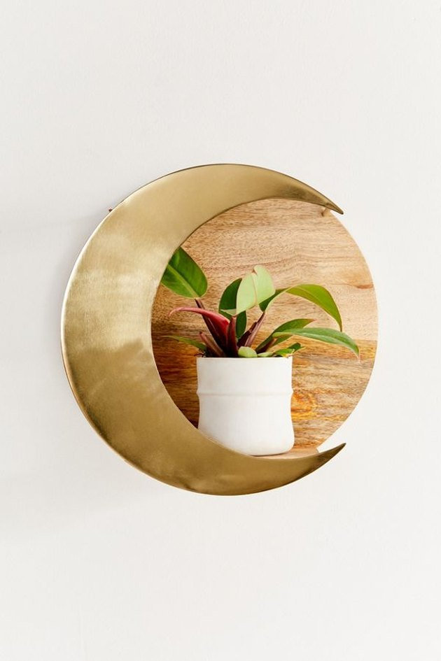 moon-shaped plant shelf with plant in white planter