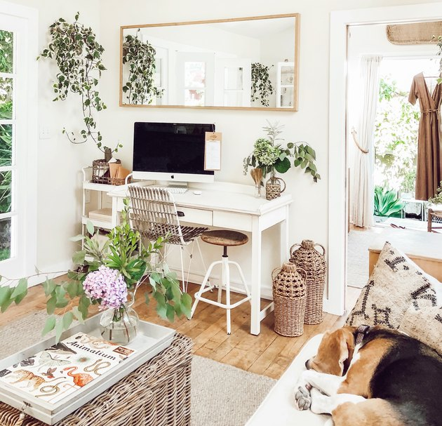 small-space home office with hanging plants