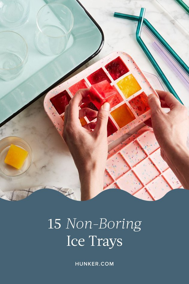 15 Ice Trays That Are Anything But Boring